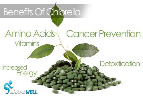 Key Benefits Of Chlorella