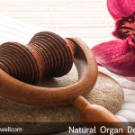 Organ Detoxification – Improving Your Overall Internal Health